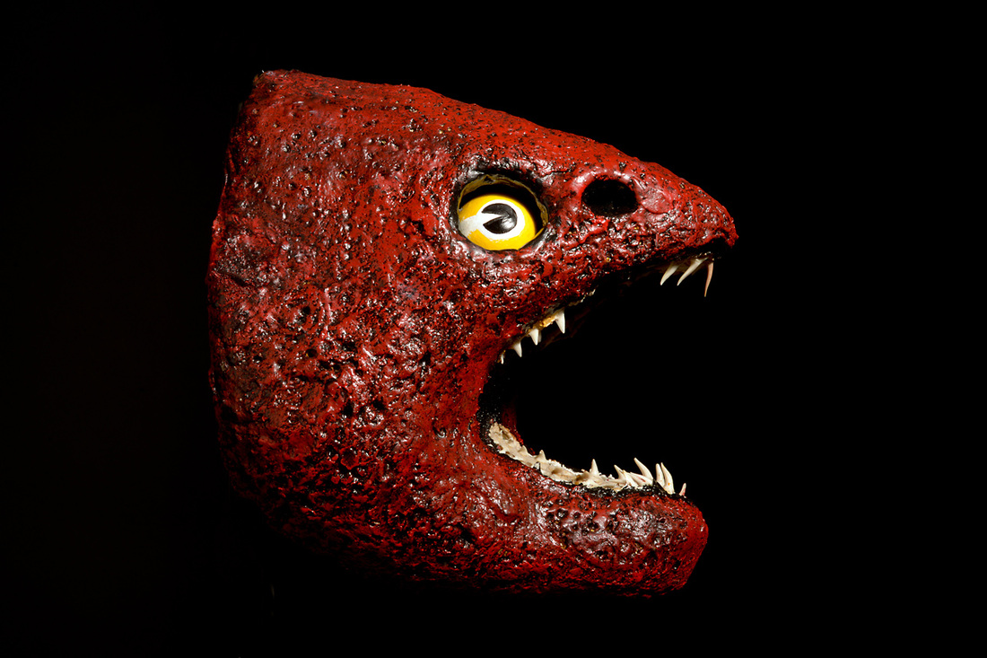 moray eel mask, toothfish international street artist, photo by James Gilberd